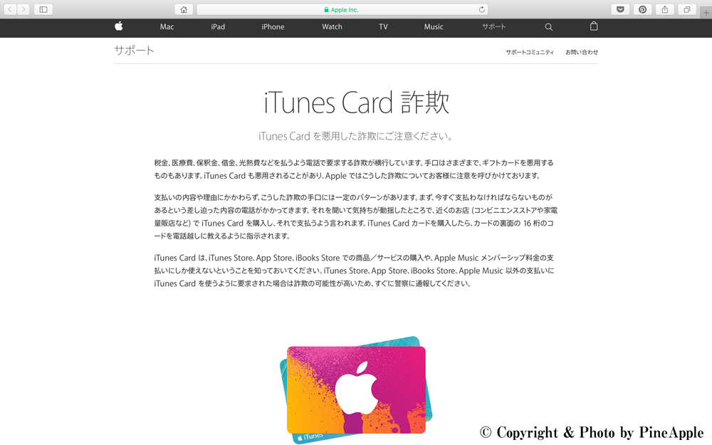 iTunes Card 詐欺