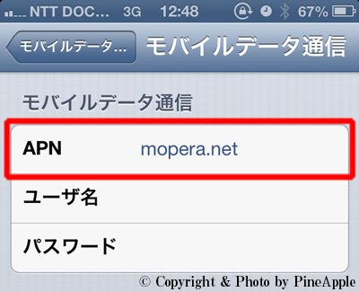 APN とインターネット共有」に接続先を指定して入力